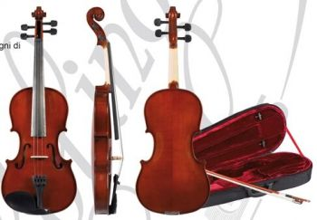 Roling's HDV-11 3/4 Violino Superior Line Solid Tod