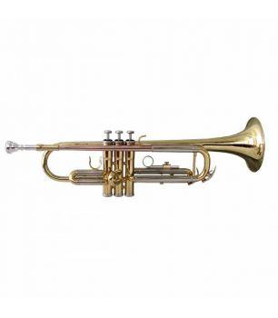 Soundsation STPGD-10 GOLD Tromba in SIb con astuccio